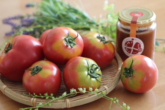 ふうこちゃんトマト
